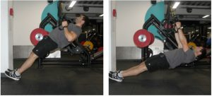 bodyweight-row-jl-fitness-solutions
